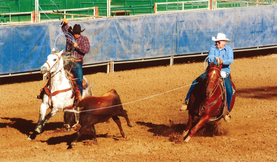 Champion Roping Horse Returns after Botulism Poisoning