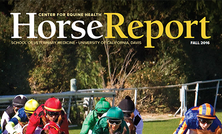 Center for Equine Health - Horse Report