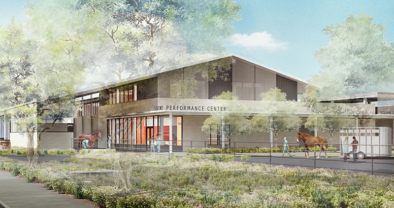 equine performance center rendering