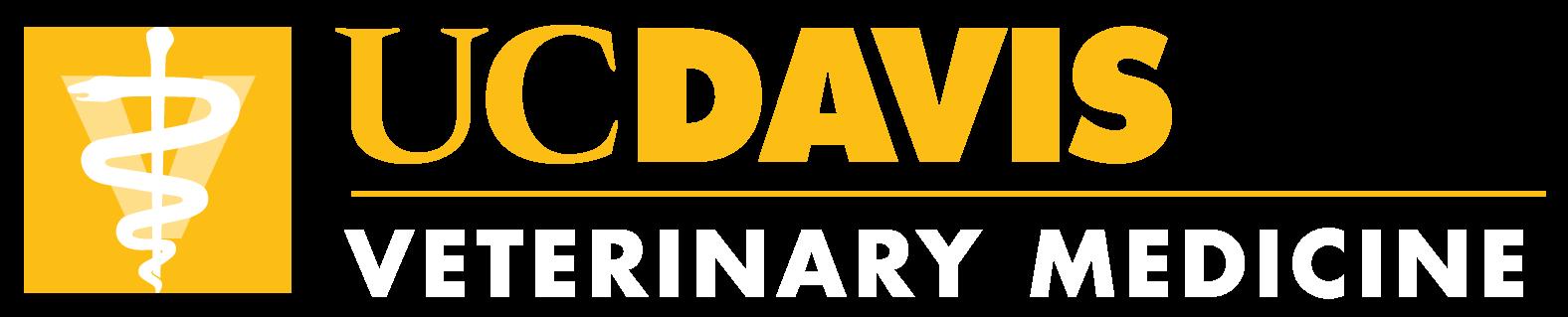 SVM Logo