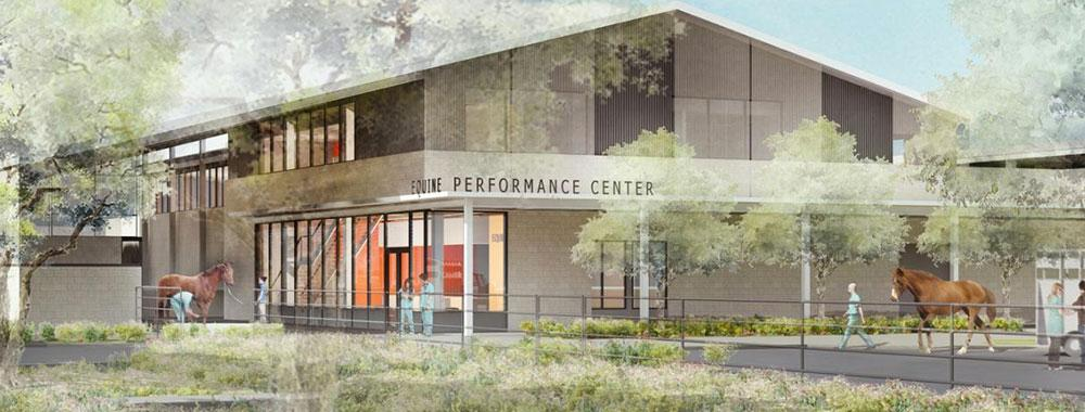 See what the future of Veterinary Medicine will look like at UC Davis.