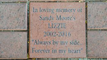 "In loving memory of Sandy Moore's Lizzie 2002-2016 ""Always by my side... Forever in my heart"""