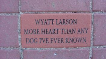 Wyatt Larson, More Heart Than Any Dog I've Ever Known