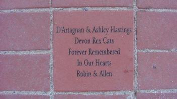 D'Artagnan & Ashley Hastings, Devon Rex Cats, Forever Remembered In Our Hearts. Robin & Allen