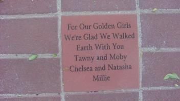 For our Golden Girls We're Glad We Walked Earth With You Tawny and Moby Chelsea and Natasha Millie