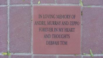 In loving memory of Andre, Murray and Zeppo. Forever in my heart and thoughts. Debrah Tom