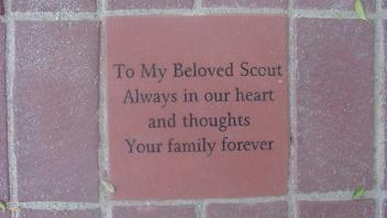 To My Beloved Scout Always in our heart and thoughts. Your family forever.