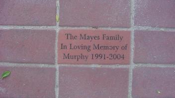 The Mayes Family In Loving Memory of Murphy 1991-2004