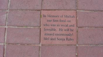 In Memory of Michah our first feral cat who was so vocal and loveable. He will be missed enormously! Mel and Sonja Raley