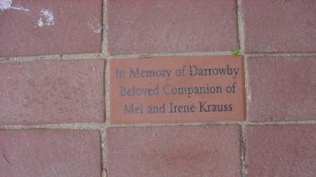 In Memory of Darrowby Beloved Companion of Mel and Irene Krauss