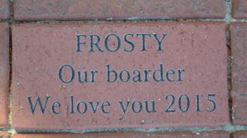 Frosty Our boarder We love you 2015