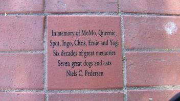 In memory of MoMo, Queenie, Spot, Ingo, Chris, Ernie and Yogi; Six decades of great memories, Seven great dogs and cats - Niels C. Pedersen