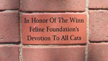 In Honor Of The Winn Feline Foundation's Devotion To All Cats