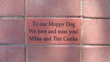 To our Moppy Dog, We love and miss you! M'liss and Tim Cunha
