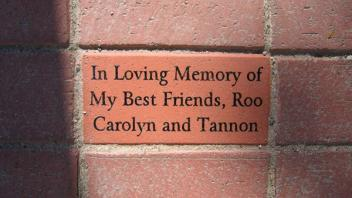 In Loving Memory of My Best Friends, Roo Carolyn and Tannon