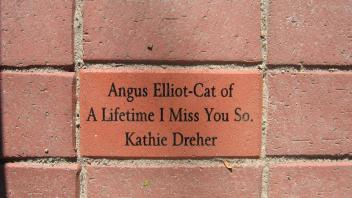 Angus Elliot - Cat of A Lifetime I Miss You So. Kathie Dreher