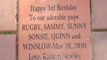 Happy 3rd Birthday to our adorable pups Rugby, Sammy, Sunny, Sonsie, Quinn and Winslow - May 28, 2010. Love, Katie & Bentley