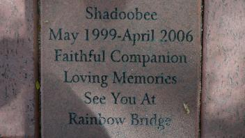 Shadoobee May 1999-April 2006 Faithful Companion Loving Memories See You At Rainbow Bridge