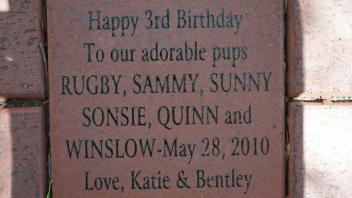 Happy 3rd Birthday To our adorable pups RUGBY, SAMMY, SUNNY SONSIE, QUINN and WINSLOW-May 28, 2010 Love, Katie & Bentley