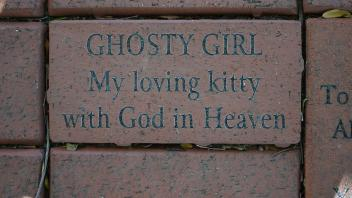 GHOSTY GIRL My loving kitty with God in Heaven