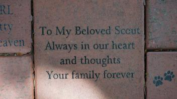 To My Beloved Scout Always in our heart and thoughts Your family forever