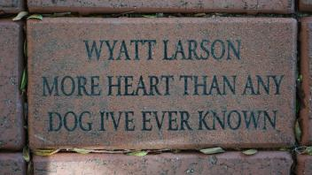 Wyatt Larson More Heart Than Any Dog I've Ever Known