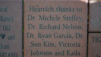 Heartfelt thanks to Dr. Michelle Steffie, Dr. Richard Nelson, Dr. Ryan Garcia, Dr. Sun Kim, Victoria Johnson and Kaila