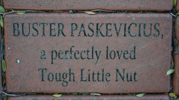 BUSTER PASKEVICIUS, a perfectly loved Tough Little Nut