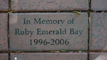 In Memory of Ruby Emerald Bay 1996-2006