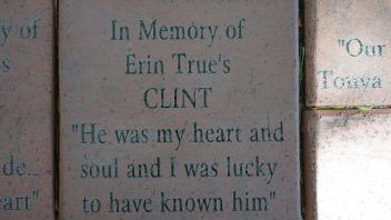 "In Memory of Erin True's CLINT ""He was my heart and soul and I was lucky to have known him"""