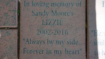 "In loving memory of Sandy Moore's LIZZIE 2002-2016 ""Always by my side.. Forever in my heart"""