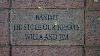 BANDIT HE STOLE OUR HEARTS WILLA AND JIM