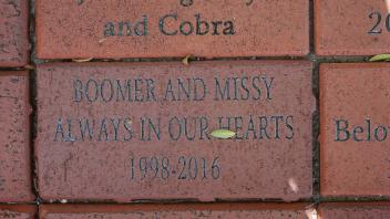 Boomer & Missy Always in Our Hearts 1998 - 2016