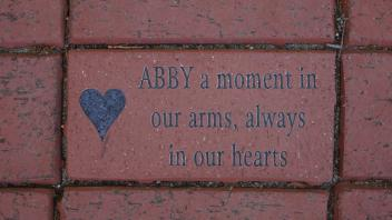 ABBY a moment in our arms, always in our hearts