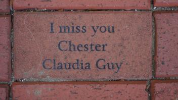 I miss you Chester Claudia Guy