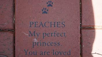 PEACHES My perfect princess. You are loved