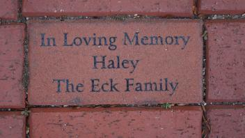 In Loving Memory Haley The Eck Family