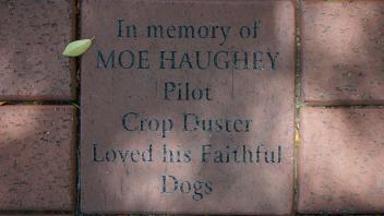In memory of MOE HAUGHEY Pilot Crop Duster Loved his Faithful Dogs