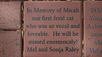 In Memory of Micah our first feral cat who was so vocal and loveable.   He will be missed enormously!  Mel and Sonja Raley