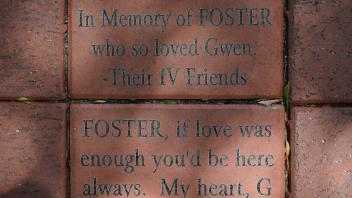 FOSTER, if love was enough you'd be here always.  My heart, G