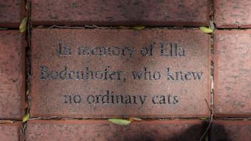 In memory of Ella Bodenhofer, who knew  no ordinary cats
