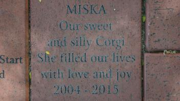 MISKA Our sweet and silly Corgi She filled our lives with love and joy 2004 - 2015