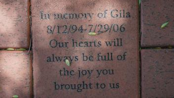 In memory of Gila 8/12/94-7/29/06 Our hearts will always be full of the joy you brought to us