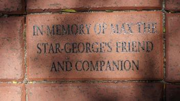 IN MEMORY OF MAX THE  STAR-GEORGE'S FRIEND  AND COMPANION