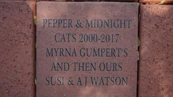 PEPPER & MIDNIGHT CATS 2000-2017 MYRNA GUMPERT'S AND THEN OURS SUSI AND A J WATSON