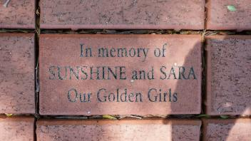 In memory of SUNSHINE and SARA Our Golden Girls