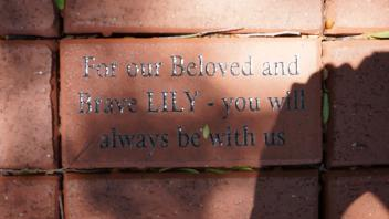 For our Beloved and Brave LILY - you will always be with us