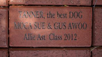 TANNER, the best DOG MOCA SUE  Allie Ast  Class 2012
