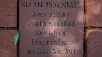 STATLER BOOSEMBARK A very brave boy Grand Newfoundland My best friend living in my heart Feb. 2004 - Nov. 2014
