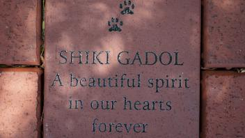 SHIKI GADOL A beautiful spirit in our hearts forever